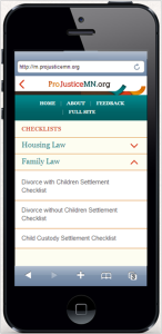 Pro Bono To Go - Checklist Options